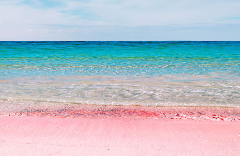 pink sandy beach Bermuda